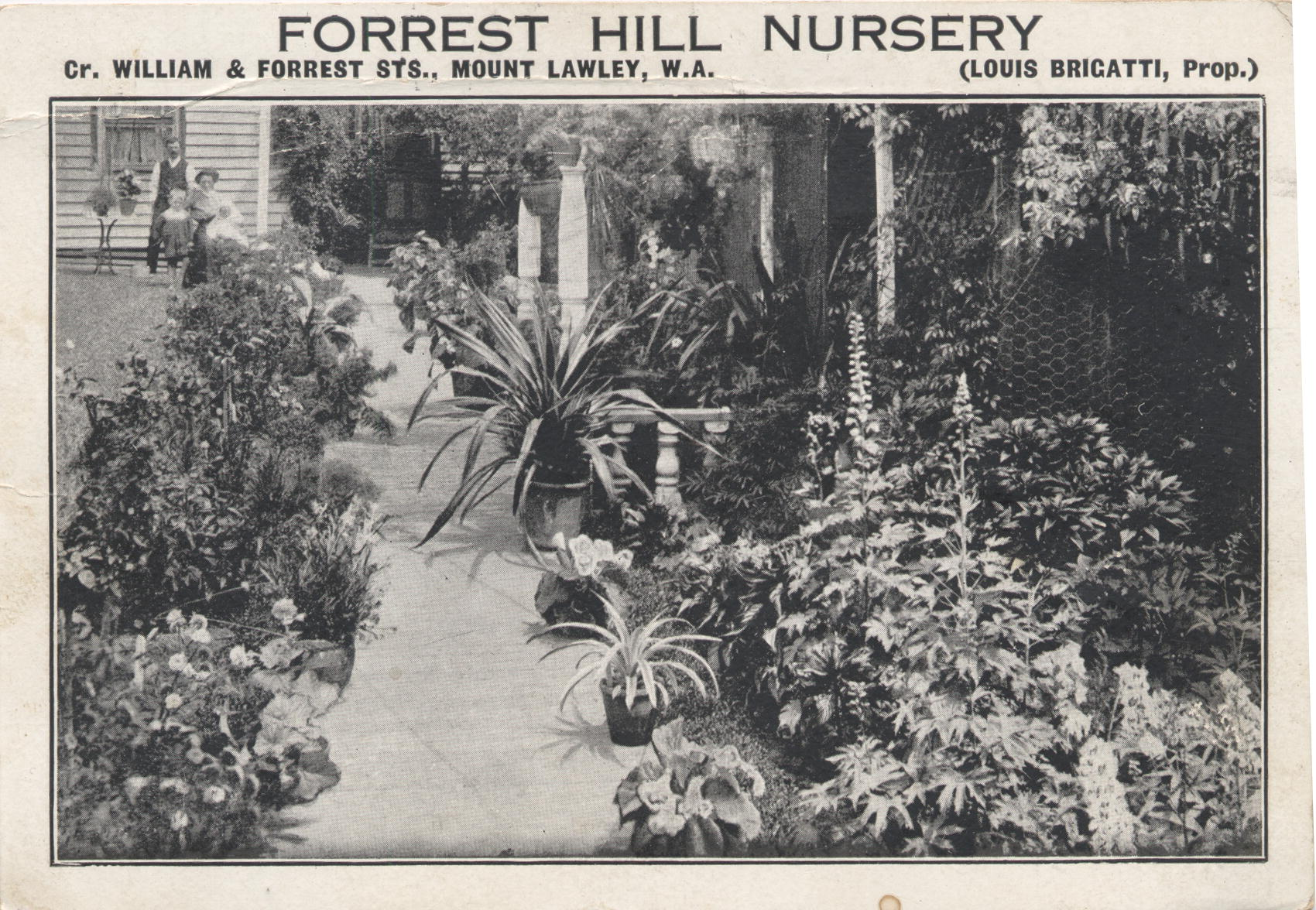 Early Nurseries in the City of Vincent presented by John Viska